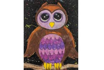 60min Learn to Draw Animals - Owl