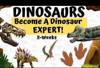 DINOSAURS ROCK - Become A Dinosaur Expert - Museum Class w/ Activity Supplies Shipped to You!