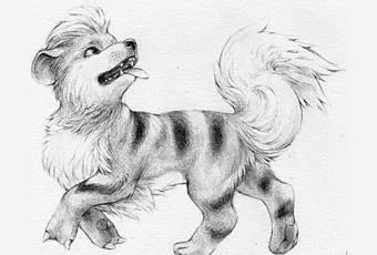 60min How to Draw Pokemon Lesson - Growlithe Sketch