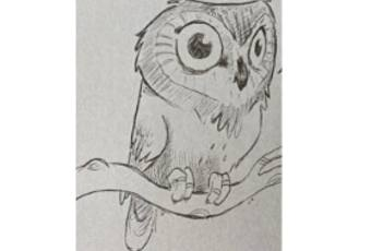 60min Animal Pencil Sketching Art Lesson - Owl