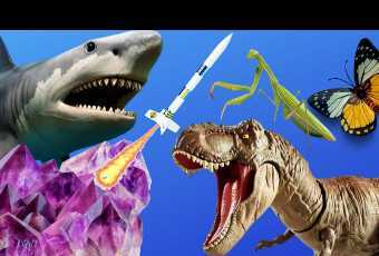 DINOSAURS ROCK Science Museum Class - Fossils, Gems, Rocketry, Insects, Oceans - Activity Supplies Shipped to you!