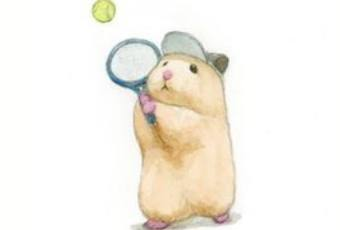 60min How to Draw Animals- Hamster Playing Tennis