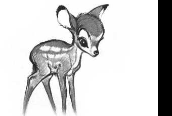 45min Baby Animal Sketching Lesson - Deer