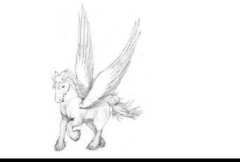 60min Animal Pencil Sketching Art Lesson - Pegasus