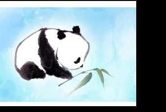 45min Chinese New Year Baby Panda Watercolor Painting